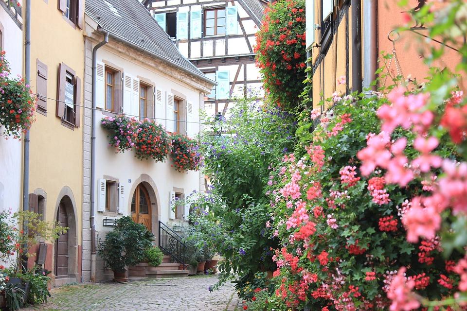France, Alsace, Eguisheim, Village, Vieux, Fleurs