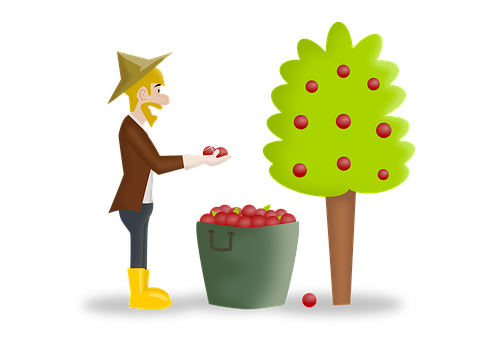 報酬, 刈り取り, 収穫, 幸せ, 幸福, 植栽, ファーム, 農業, 農家
