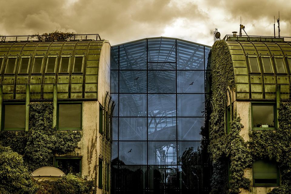 Architettura parete di vetro edera · foto gratis su pixabay