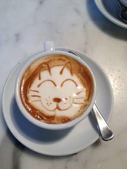 Coffee, Cat, Whisker, Animal