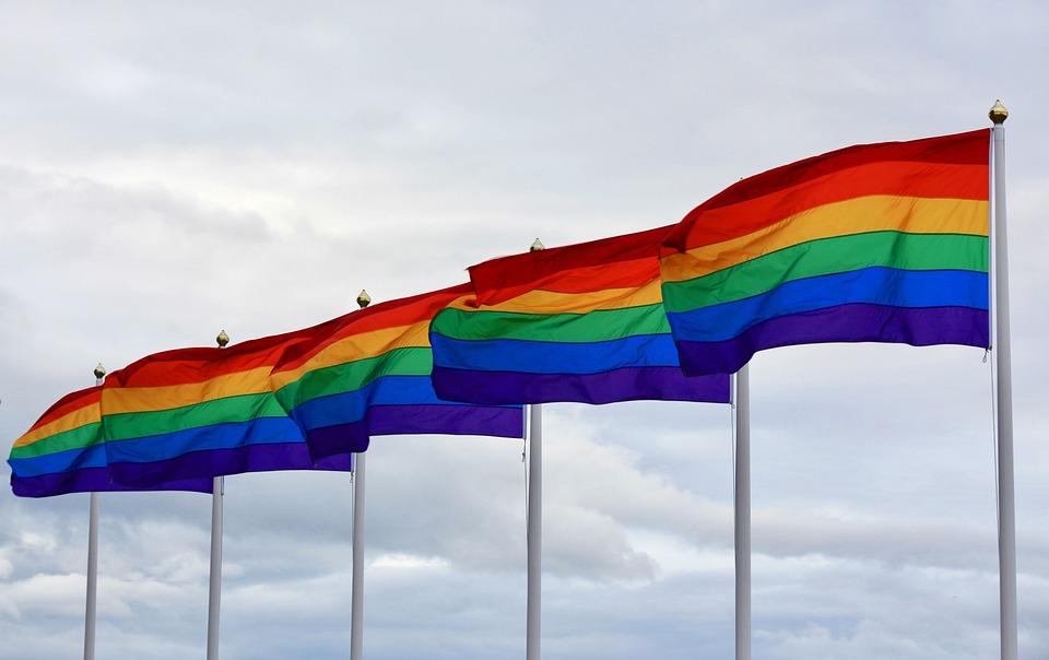 Pride Flag image by pixibay.com