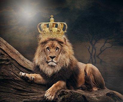 王, ライオン, この商品につけられたタグ, クラウン, 動物の世界, アート