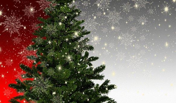Weihnachten, Tannenbaum, Mockup, Sterne