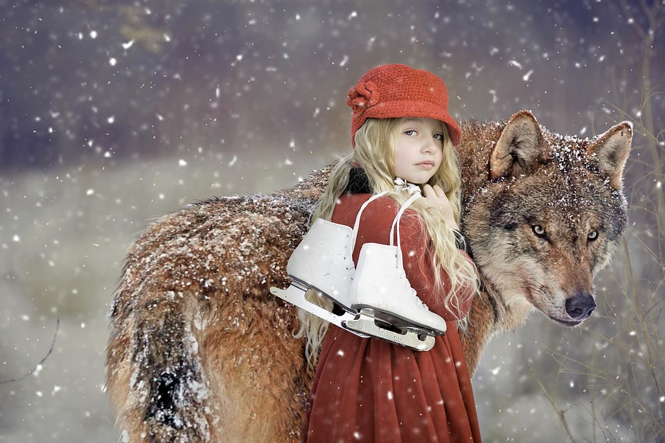 Rotkäppchen, Wolf, Girl, Child, Snow, Snowflakes