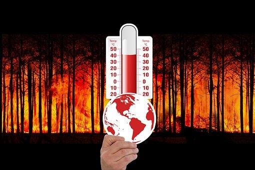 Klimawandel, Thermometer, Waldbrand