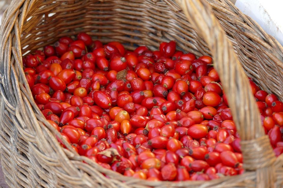 Fruit De L'Églantier, Panier, Rouge, L'Automne