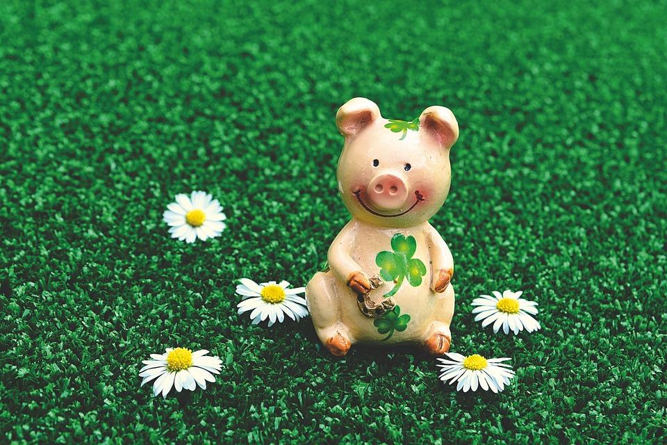 幸運な豚, 数字, かわいい, 運, Shamrocks, 幸運のお守り, 子豚, ラッキー豚, おかしい