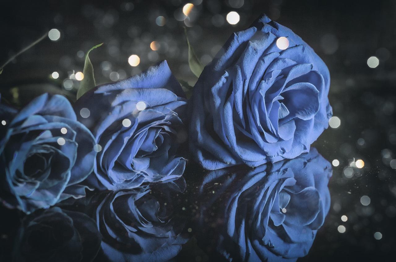 Синяя роза картинки на аву