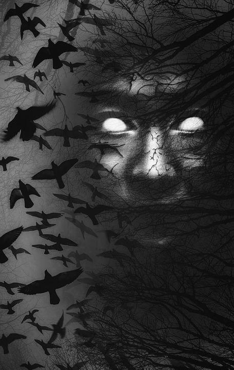 Darkness, Evil, Creature, Birds, Hidden, Forest