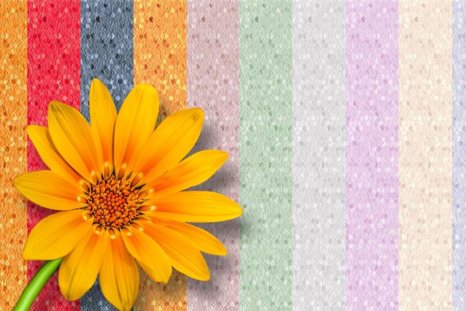Flori Gérbel Frumoase Imagine Gratuită Pe Pixabay