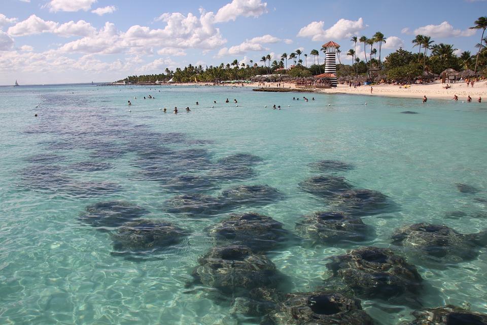 Dominikana, Wyspa, Beach, Morza, Podróże, Piasek, Ocean