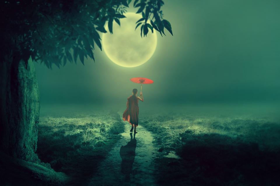 Arbre, Lune, Lane, Moine, Écran, Au Clair De Lune