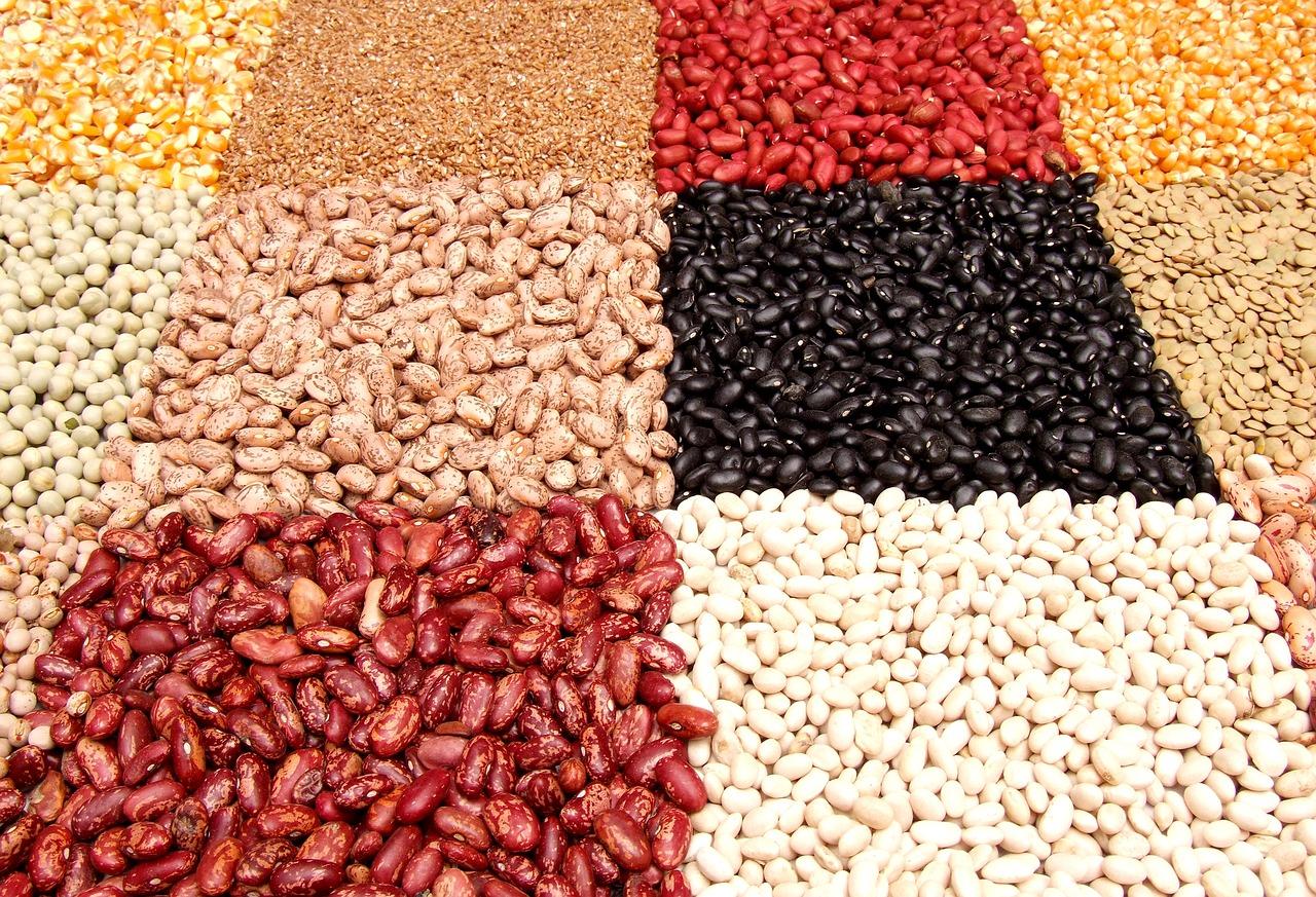 String Bean Beans Assortment