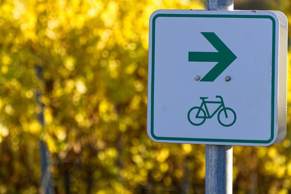 Fahrradweg, Schild, Zeichen, Symbol, Herbstlaub