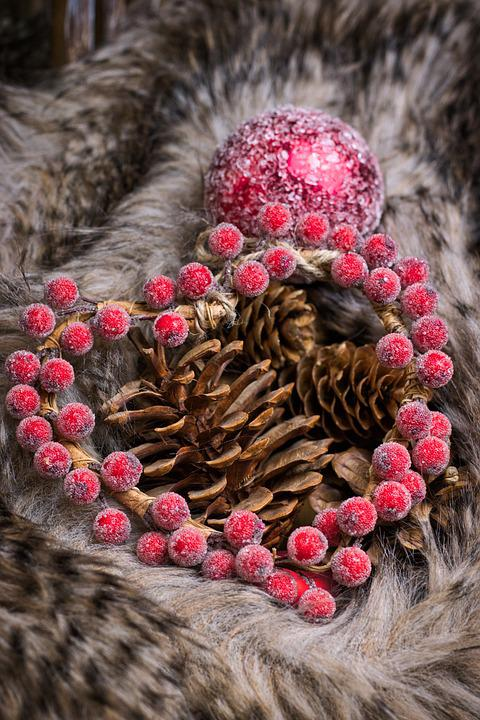 Heart, Fur, Pine Cones, Christmas Picture, Christmas