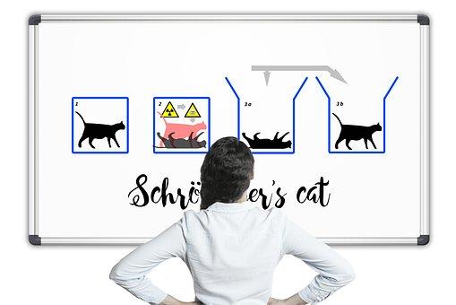 Física, Schrödinger'S Cat, Schrödinger