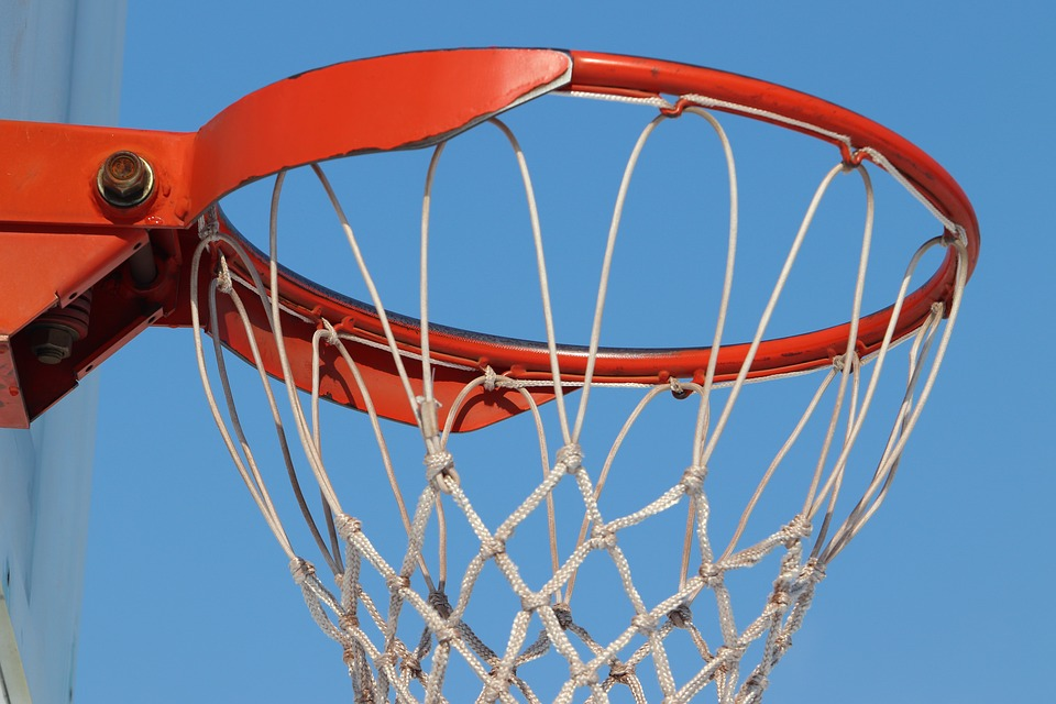 Basketball, Sport, Goji, Basketball Hoops, Basket, Net