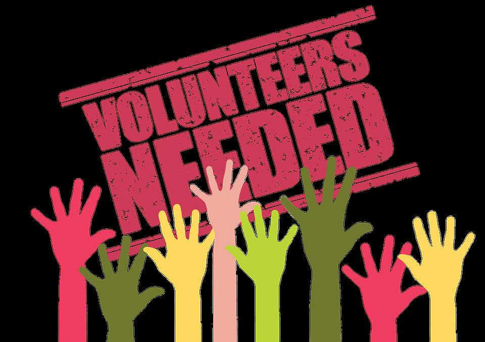 Volunteers, Search, Application, Hands, Help, Helper