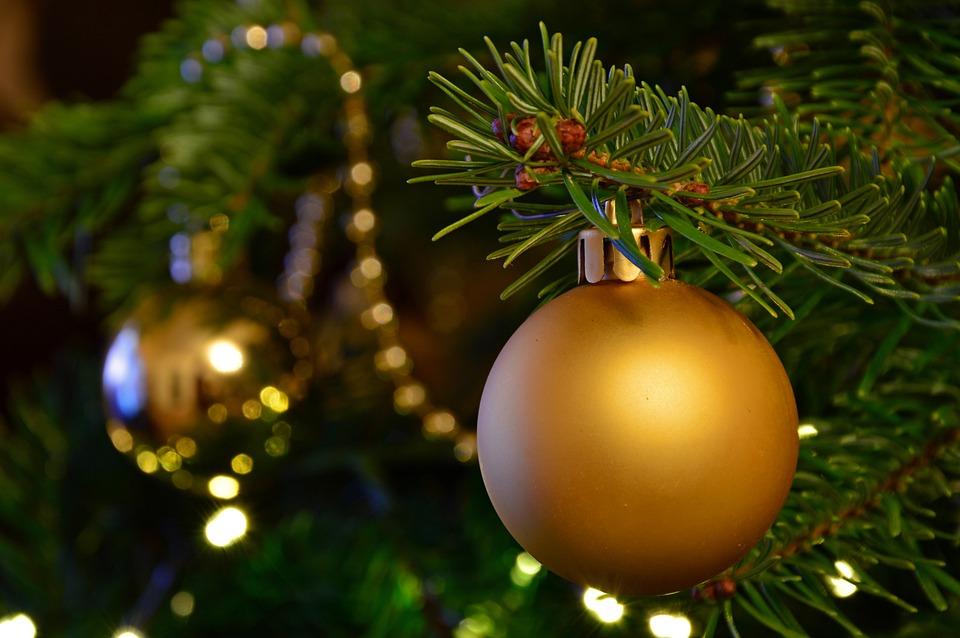Zdjęcia Świąteczne, Boże Narodzenie, Jodła, Bombka