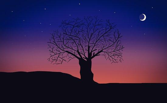 200+ Free Crescent Moon u0026 Moon Images - Pixabay