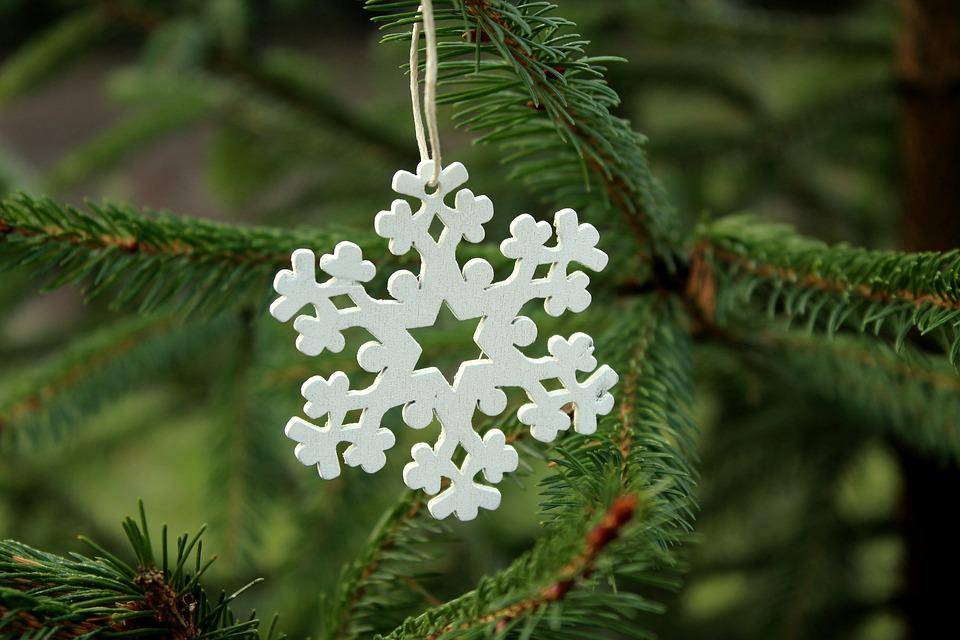 Asterisk, White, Spruce, Christmas Tree, Tree, Ornament