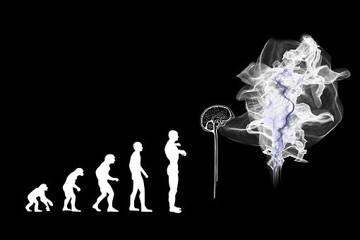 Evolution, Artificial Intelligence