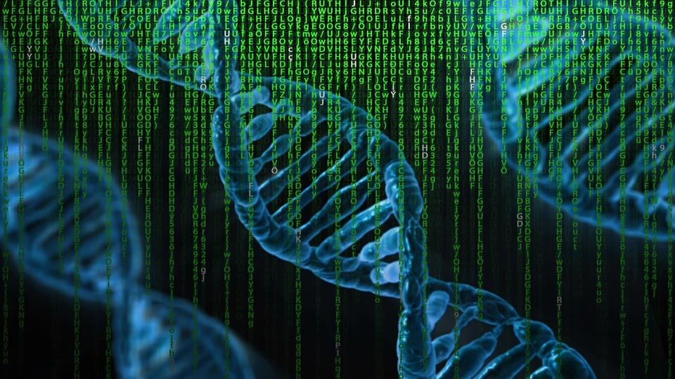Dna, マトリックス, 遺伝学, コントロール, 生物学, 警告, 注意