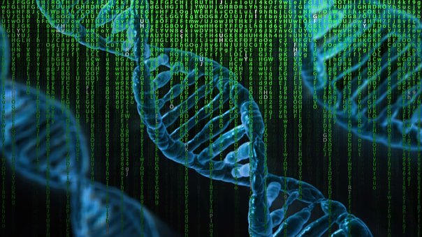 ADD and a Diagnostic DNA Chip Research