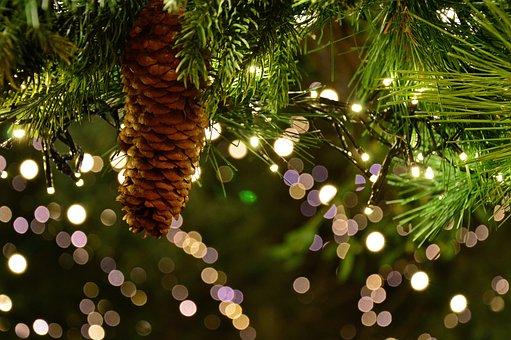 Boże Narodzenie Garland, Motyw Christmas
