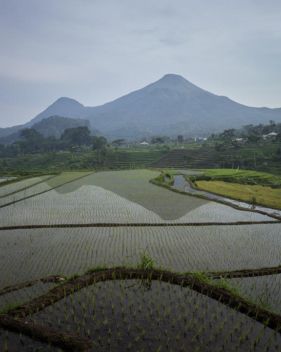 78+ Gambar Pemandangan Alam Gunung Dan Sawah Terlihat Keren