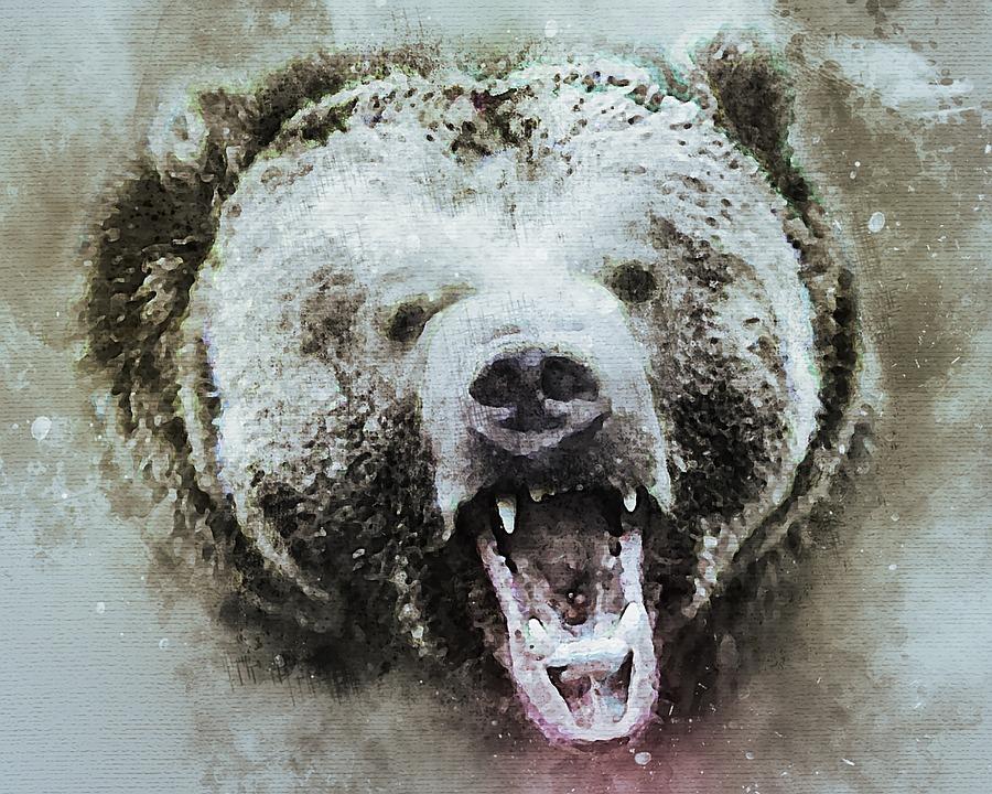 Медведь, Гризли, Животных, Природа, Живая Природа