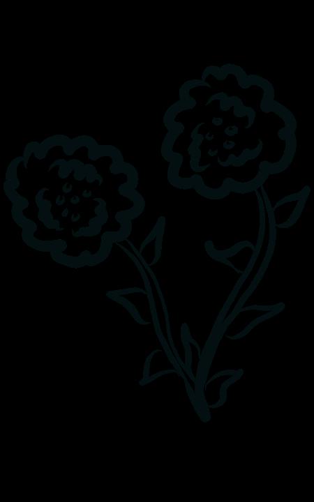 Flores Preto E Branco Desenho Imagens Grátis No Pixabay