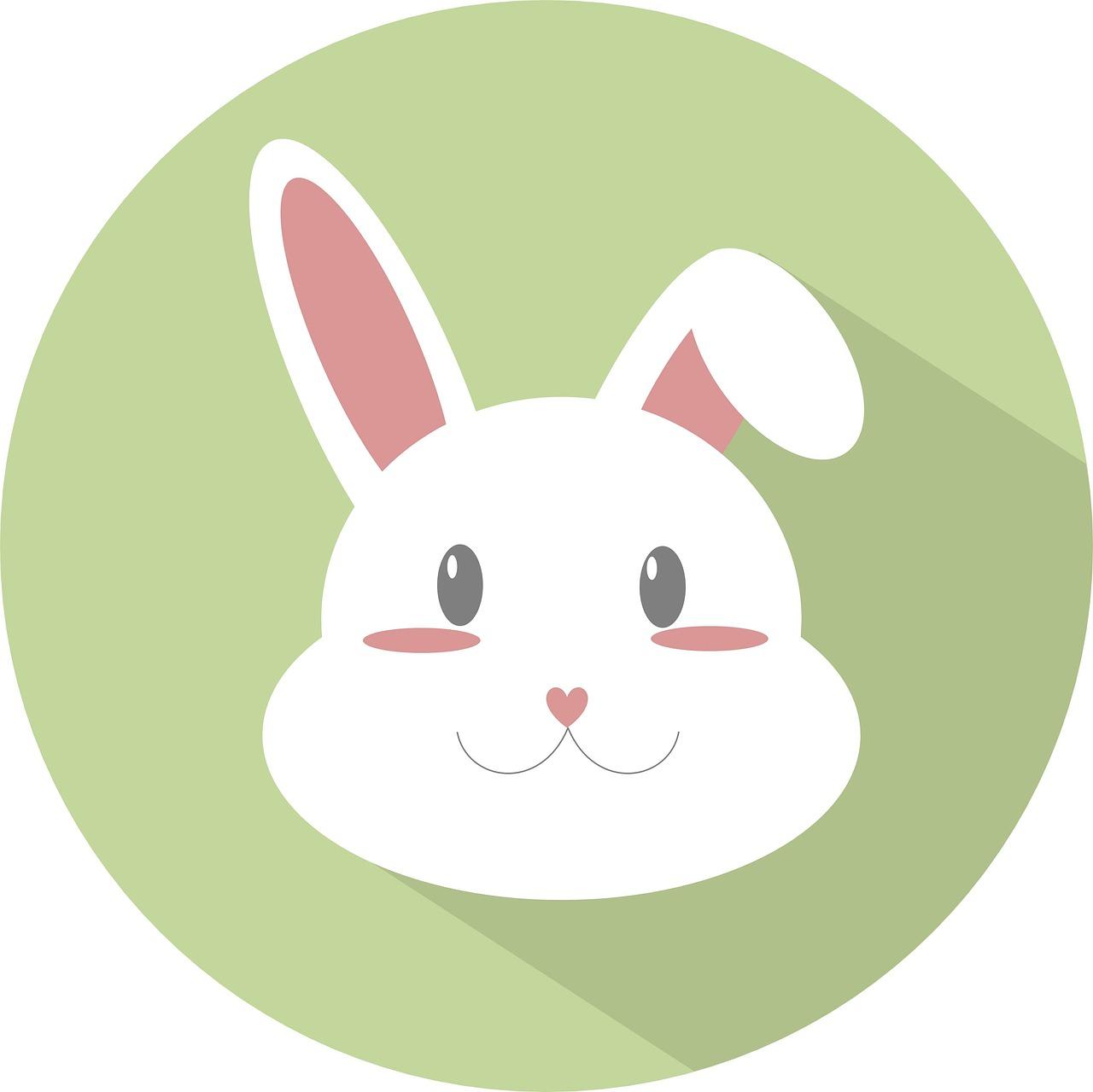 символ картинка зайчик сочетании