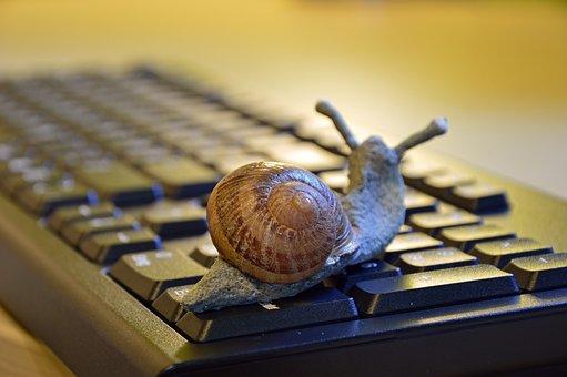 Snail, Shell, Figure, Keyboard, Slowly