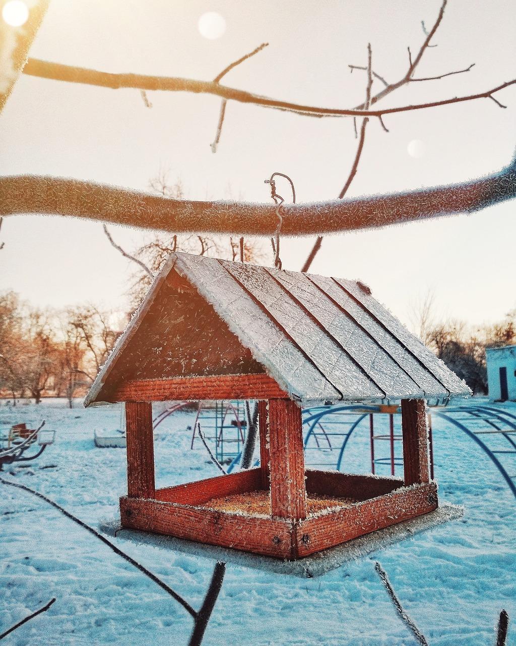 так картинки кормушек зимних кормушек для птиц этой статье
