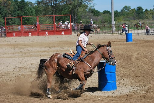 Rodeo, Barrel Racing, Cowgirl, Equine