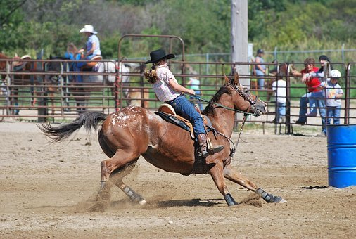 Barrel Racing, Rodeo, Horse, Appaloosa