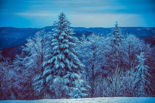 Nature Landscapes Images Pixabay Download Free Pictures