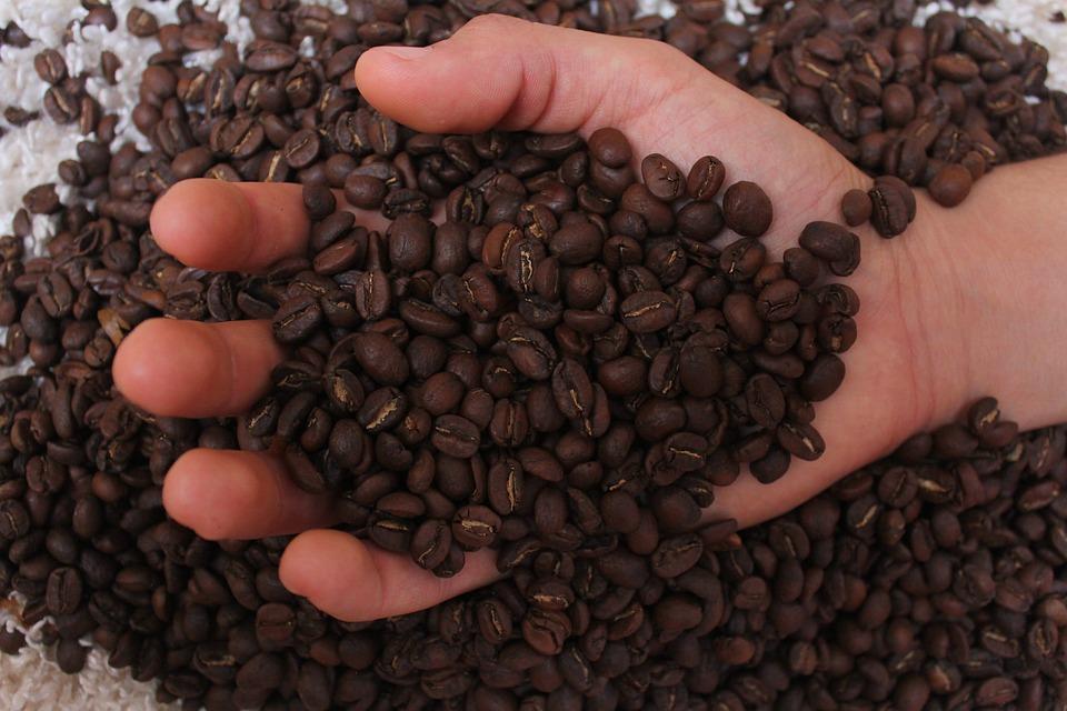 Kopi, Coffe, Minum, Kafein, Cafe, Segar, Minuman