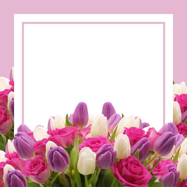 открытки для загрузки фото сосновый бор