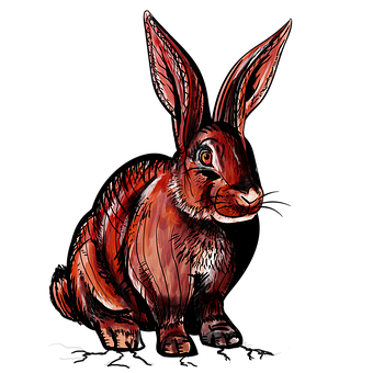 Rabbit, Wild Rabbit, Red, Bunny, Animal