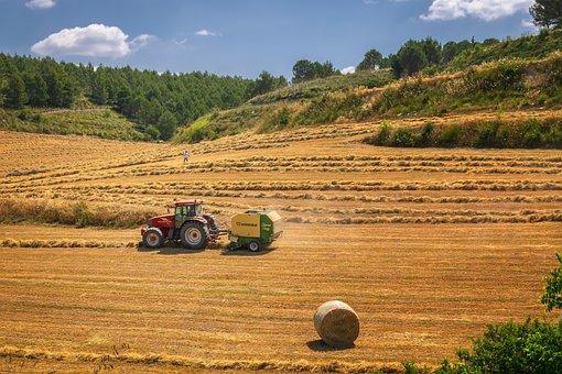 Récolte, Tracteur, Agriculture, Champ