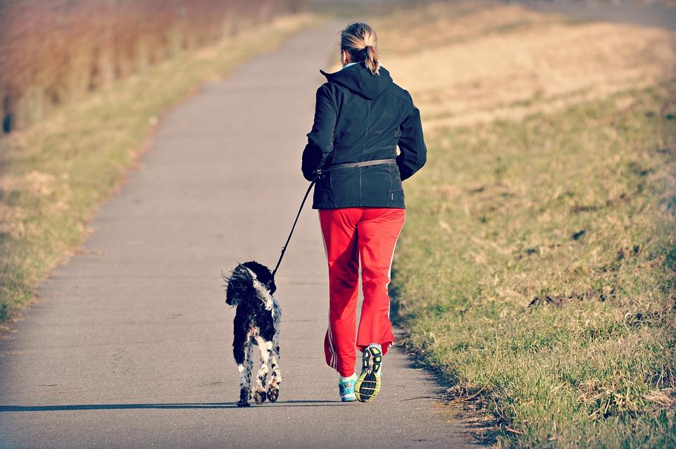 女性, 人, ジョギング, 犬, 運動, フィットネス, 健康, 国の道路, 堤防, 草, 農村