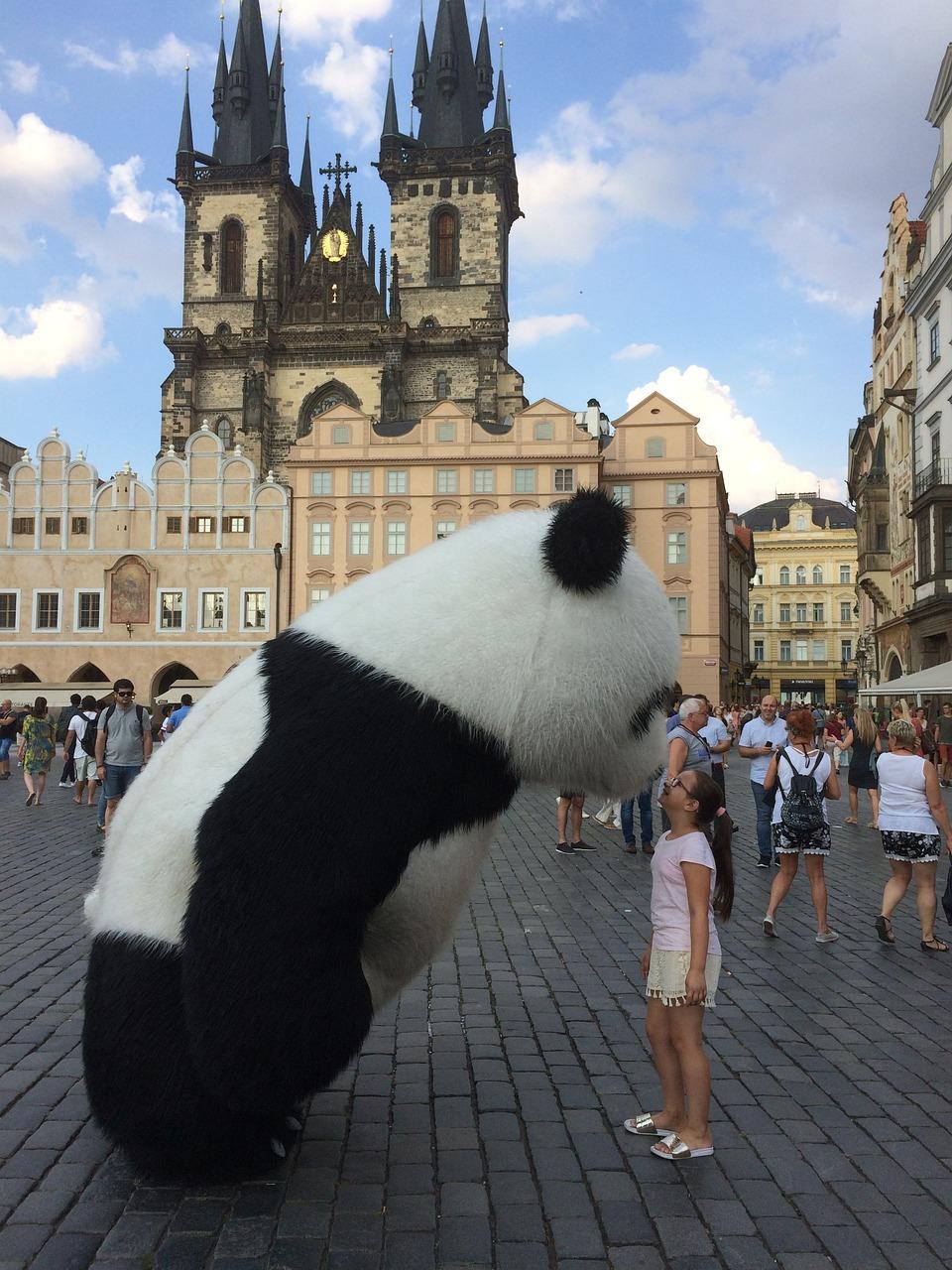 Turistka s pandou na Staroměstském náměstí. Zdroj: Pixabay
