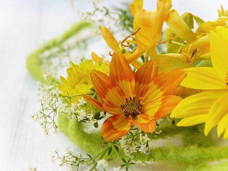 Fleur, Jaune, Orange, Fleurs