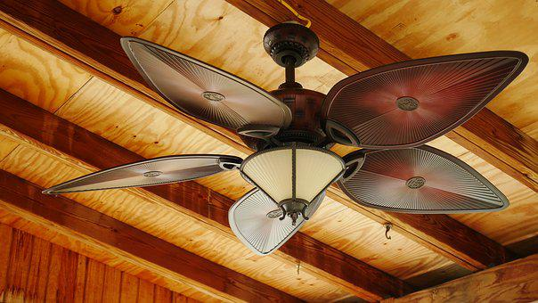Indoors, Ceiling Fan, Interior