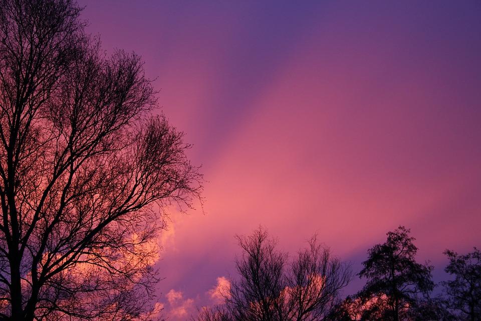冬 フリースラント州 オランダ ·...