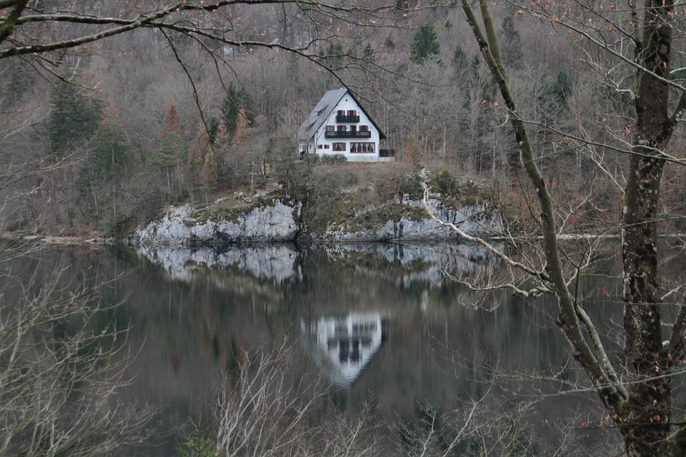 Nature, Bohinj, Slovenia, Lake