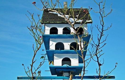 Birdhouse, Garden, Winter, Sky, Snow