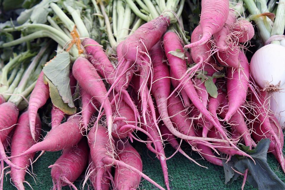 Carrot, Parsnip, Farmers, Market, Vegetable, Turnip